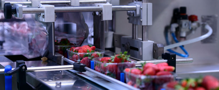 How Will the Food Safety Modernization Act (FSMA) Impact Your Bearing Selection?